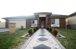 Picture of 8 Lillypilly Court, Worrolong SA 5291