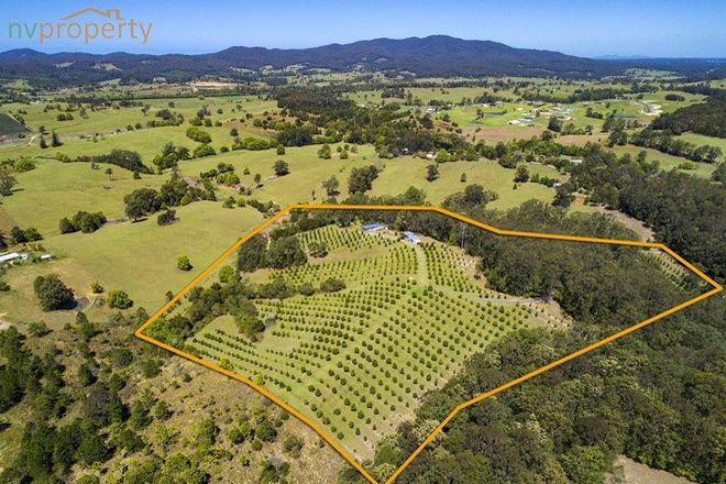 Picture of 223 Congarinni Road South, CONGARINNI NSW 2447