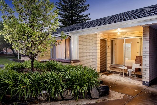 Picture of 2/18 Tudor Street, DULWICH SA 5065