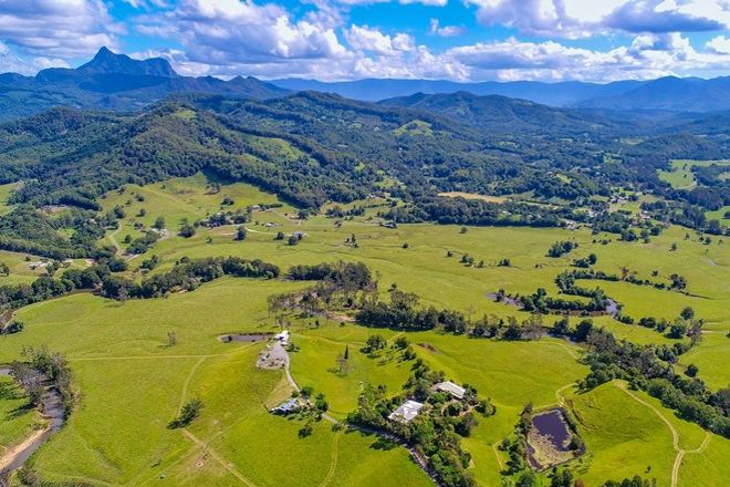 Picture of 159 Nobbys Creek Road, MURWILLUMBAH NSW 2484