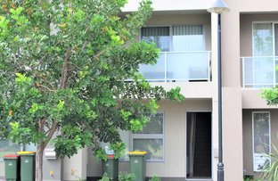 Picture of 10 Riverside Street, Mawson Lakes SA 5095