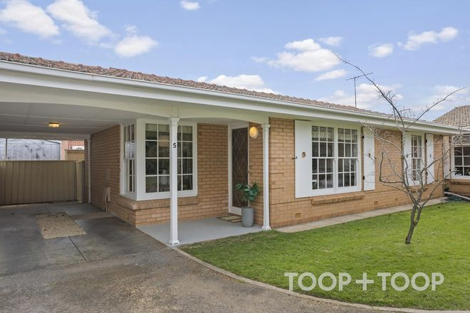 Picture of 5/10 Thornber Street, UNLEY PARK SA 5061