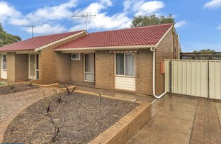 Picture of 22 Milan Street, Elizabeth East SA 5112