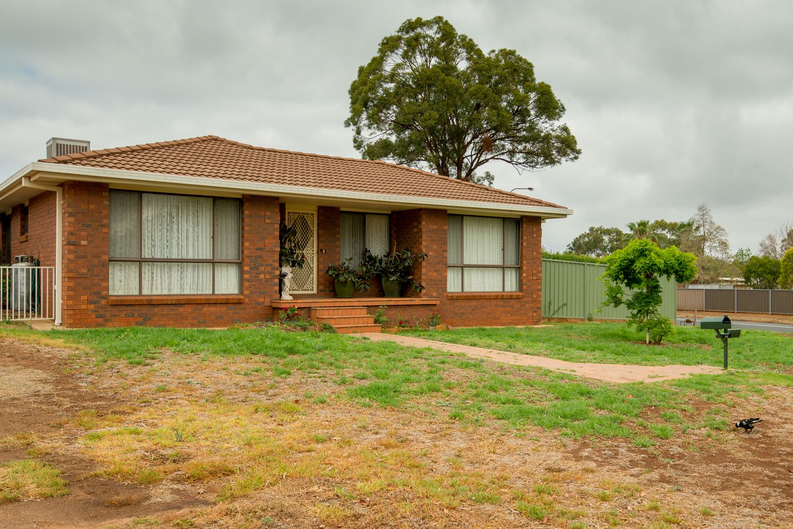 105 Birch Avenue, Dubbo NSW 2830, Image 2