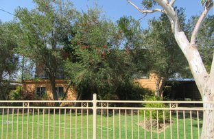 Picture of 16 Cork Street, Winton QLD 4735