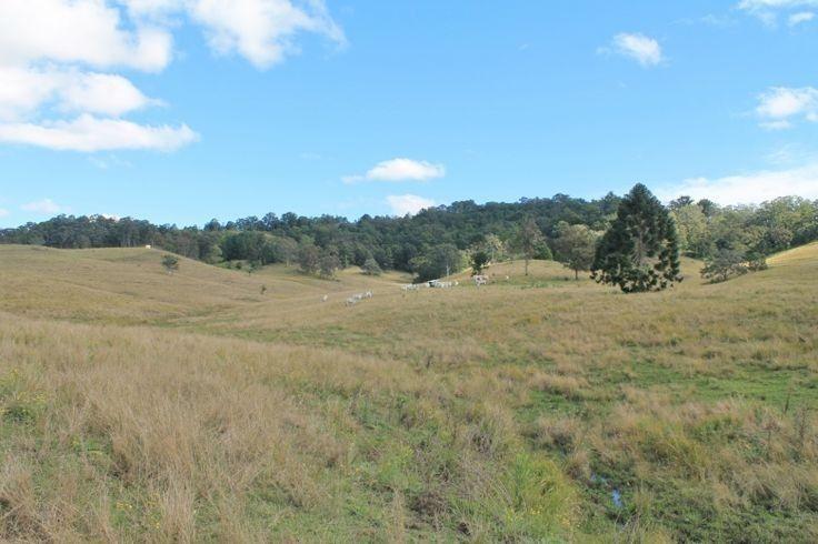 LOT 31 Collins Creek Road - Collins Creek, Kyogle NSW 2474, Image 2