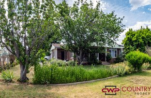 Picture of 110 Macquarie Street, Glen Innes NSW 2370