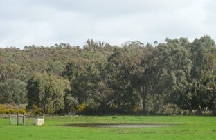 Picture of Lot 5 Wills Street, Smythesdale VIC 3351