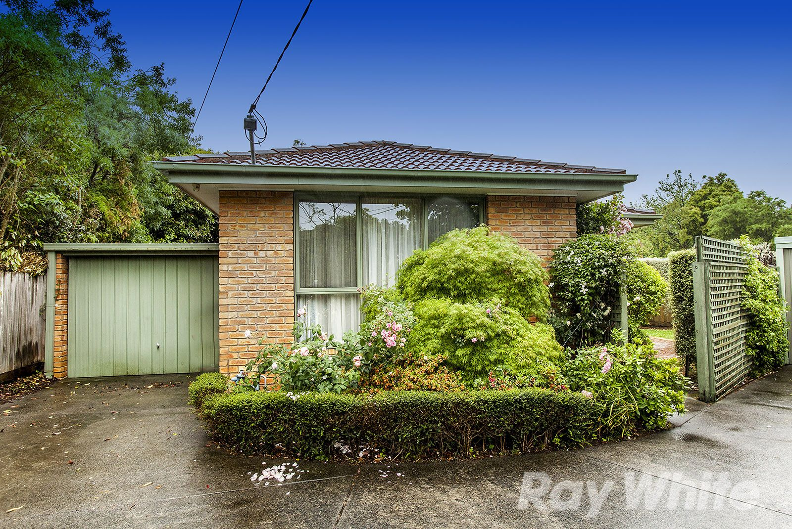 6A Lower Court, Nunawading VIC 3131, Image 0
