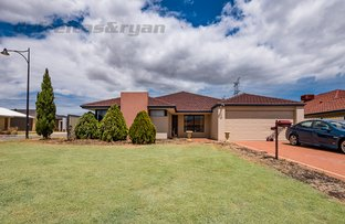 Picture of 18 Rutherford Entrance, Success WA 6164