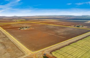 Picture of Kings Creek QLD 4361