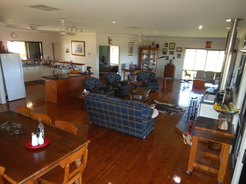 481 Greenup Limevale Rd, Coolmunda QLD 4387, Image 2