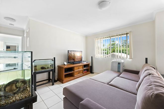 Picture of 6/6 Low Street, YANDINA QLD 4561