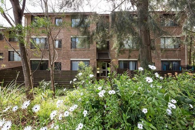 Picture of 9/1 Carlisle Close, MACQUARIE PARK NSW 2113