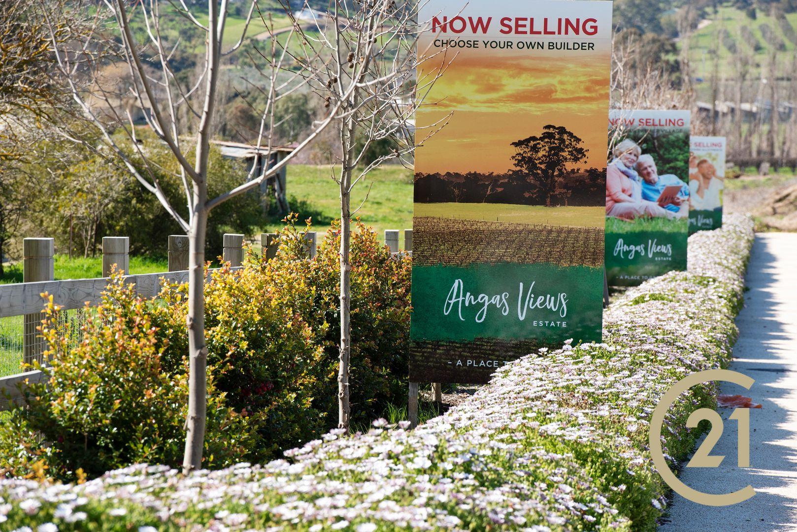 Lot 7 Radford Road, Angaston SA 5353, Image 2