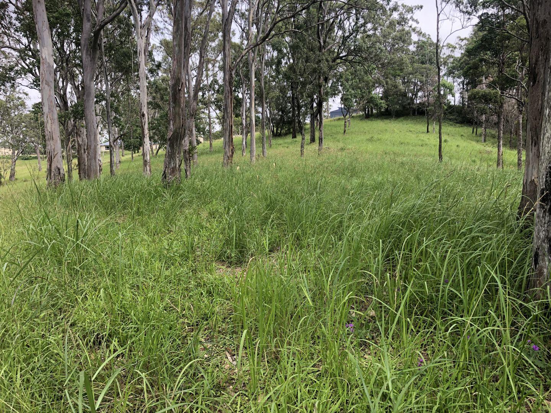 31A Dean Drive, Ocean View QLD 4521, Image 1