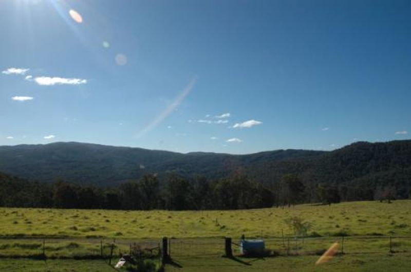 116 Mollydale Road, Tyringham NSW 2453, Image 2