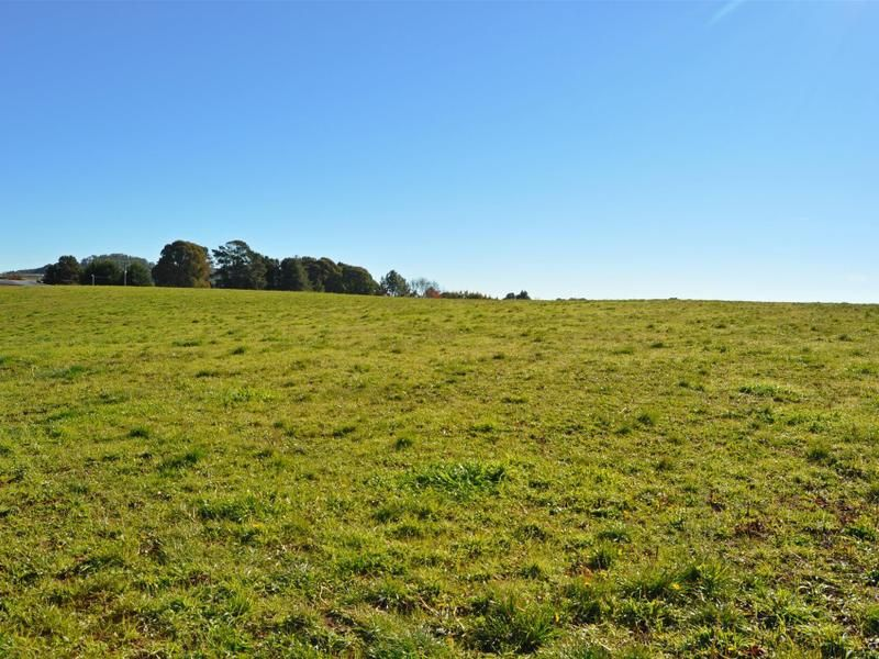 Lot 2 Yellowin Road, Batlow NSW 2730, Image 2