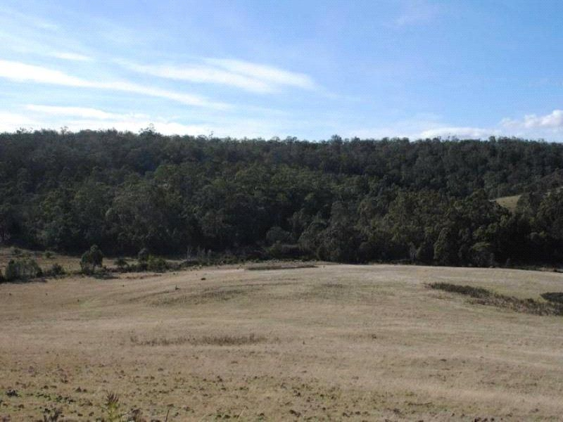 Lot 1 Triangle Marsh Road, Swansea TAS 7190, Image 1
