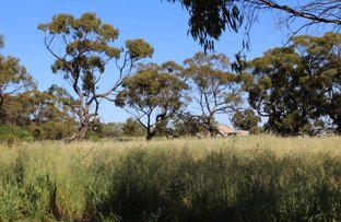 Picture of Lot 3 Midlands Road, Irwin WA 6525