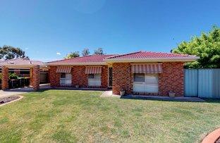 Picture of 53 Adjin Street, Mount Austin NSW 2650