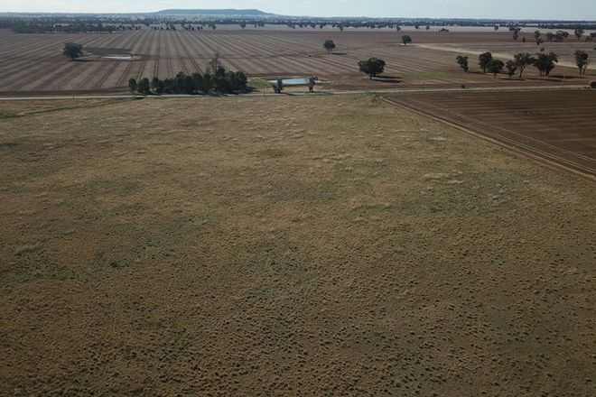 Picture of LOT 1 NAPIER ROAD, LOCKHART NSW 2656