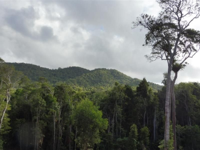130 Douglas Track, Kuranda QLD 4881, Image 0