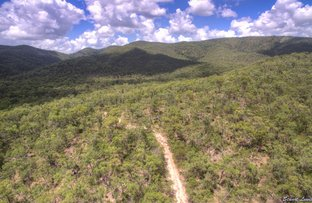 Picture of 216 Davies Road, Captain Creek QLD 4677