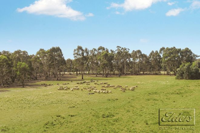 Picture of CA21 Axedale-Toolleen Road, TOOLLEEN VIC 3551