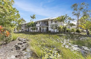 Picture of 70/73 Hilton Terrace, Noosaville QLD 4566