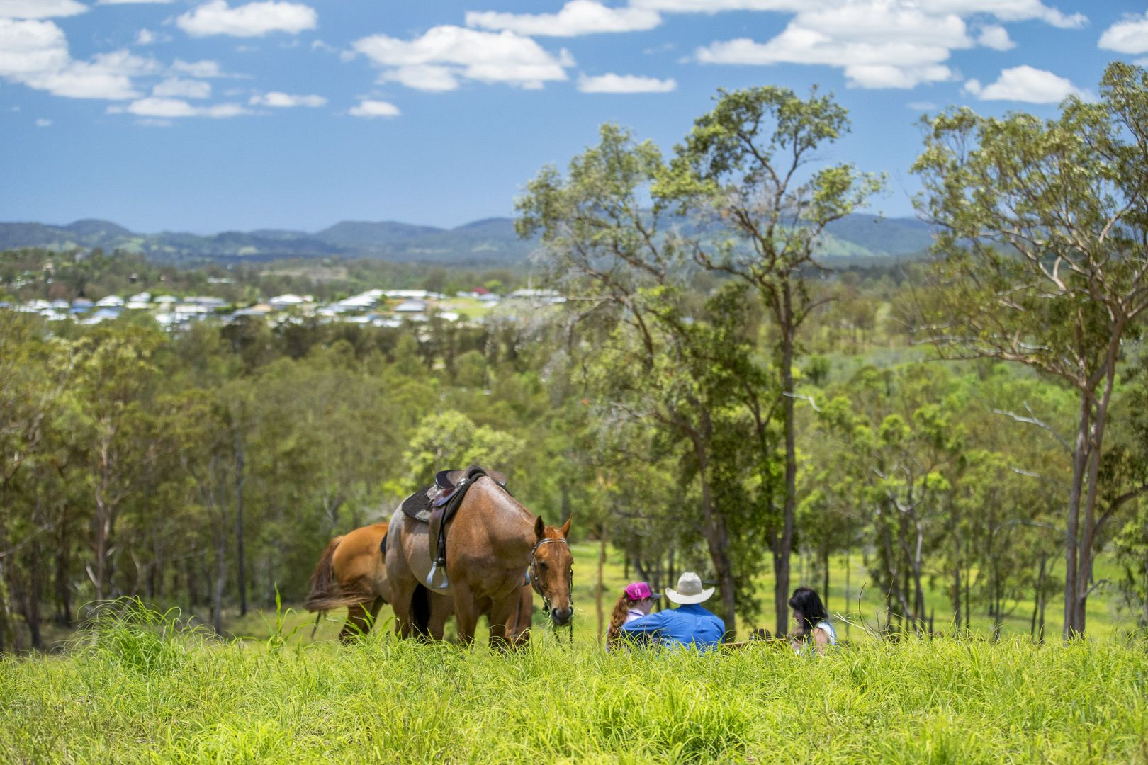 415 Groundwater Road, Jones Hill QLD 4570, Image 0