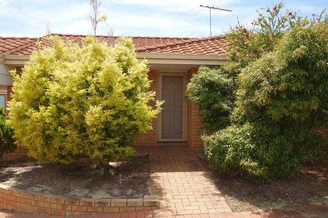 Picture of 17/69 Hutton Street, STIRLING WA 6021