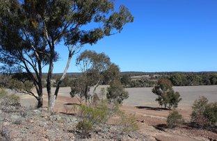 Picture of 'Kimberley' Dennykymine Road, Merrygoen NSW 2831