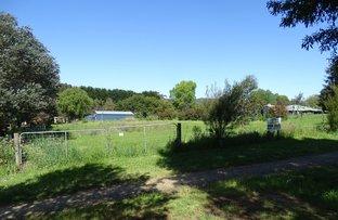 Picture of Lot 3 Forrest-Birregurra Road, Forrest VIC 3236