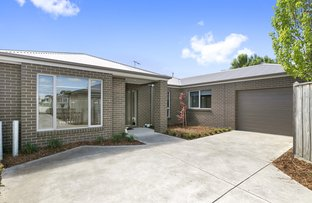 12B Knight Avenue, Herne Hill VIC 3218