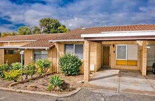 Picture of 9/104 Flinders Street, Yokine WA 6060