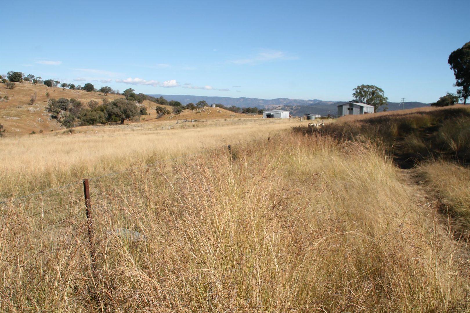 Lot 15 Gunyah Road, Tenterfield NSW 2372, Image 2