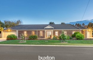 Picture of 14 Bradby Avenue, Mount Clear VIC 3350