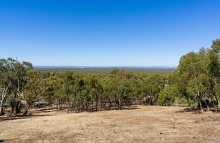 Picture of Lot 3,80 Parkins Reef Road, Maldon VIC 3463