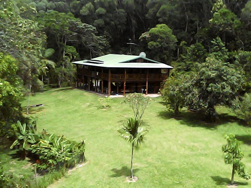 192 Forest Creek Road, Daintree QLD 4873, Image 1