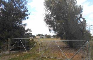 Picture of 53 - 59 Corcoran St, Berrigan NSW 2712