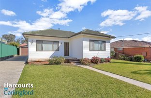 Picture of 14 Peachtree Avenue, Constitution Hill NSW 2145