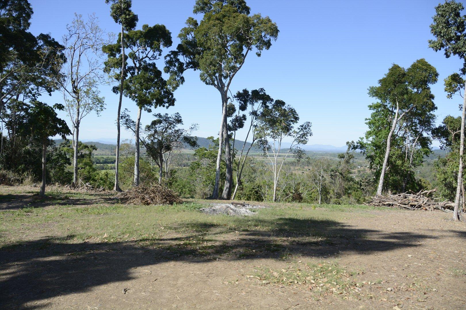 74 Domenica Drive, Sugarloaf QLD 4800, Image 0