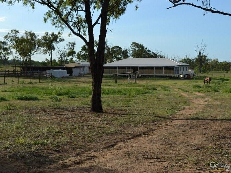 62 Clifton St, Gracemere QLD 4702, Image 0