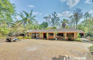 Picture of 24 Josephine Street, Camira QLD 4300