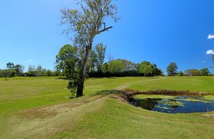 Picture of Lot 8 Macadamia Rise (Platypus Creek), Dulong QLD 4560