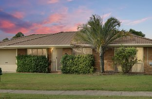 Picture of 158 Collingwood Drive, Collingwood Park QLD 4301