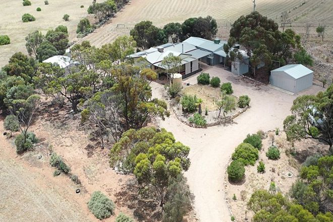 Picture of 203 Pedler Rd, MOONTA SA 5558