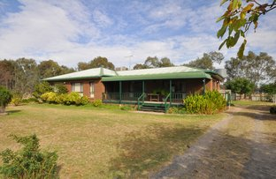 Picture of 79 Sydney Road, Holbrook NSW 2644