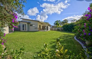 Picture of 20 Prospect Pl, Cooroy QLD 4563